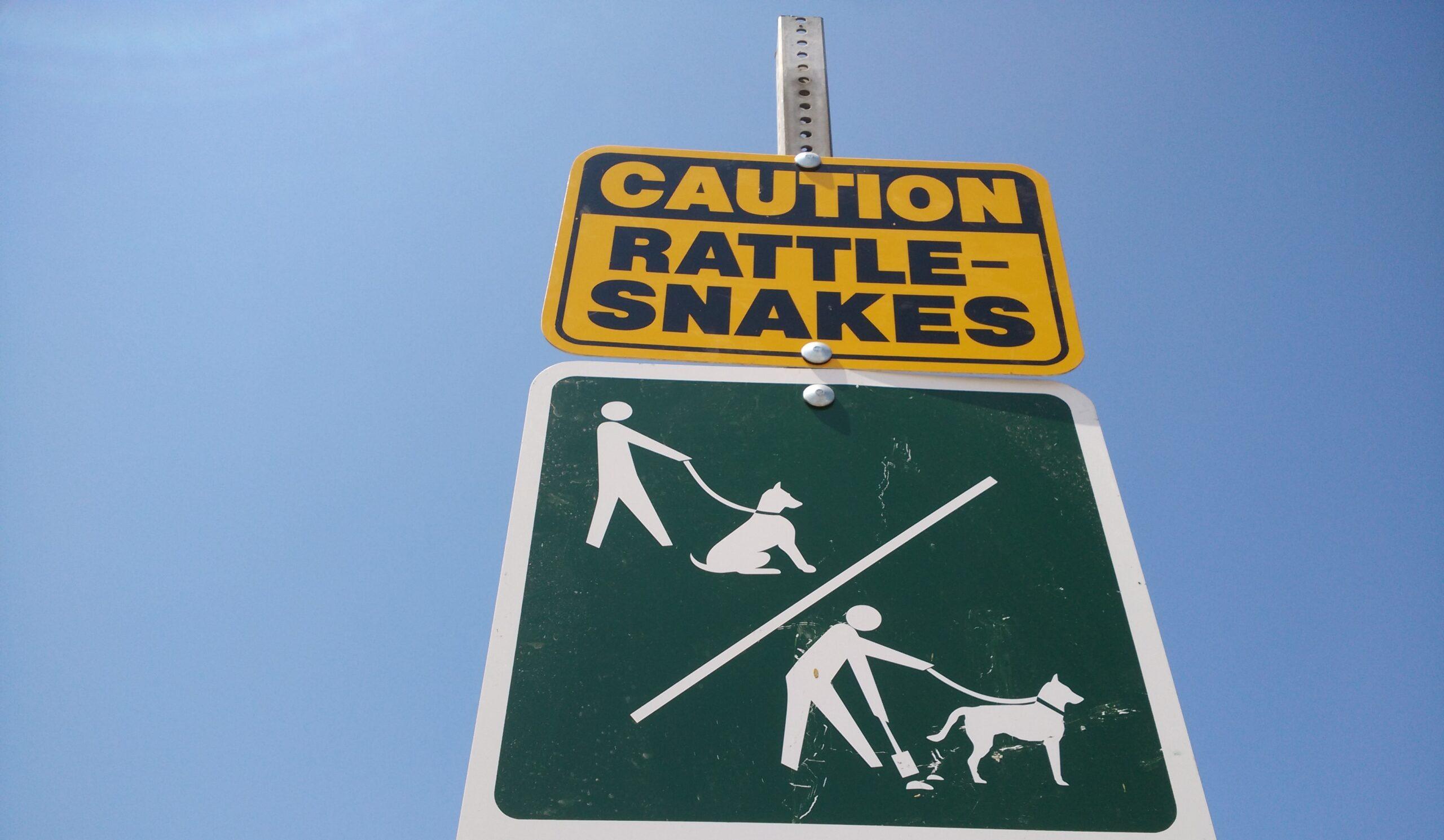 Hogyan lehet eljutni Hollywood felirathoz? - Vigyázat csörgőkígyók