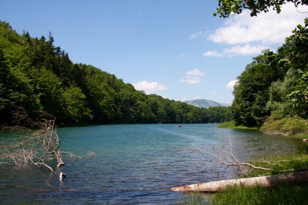 Látnivalók Montenegróban - Biogradska Gora Nemzeti Park